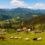 Уряд схвалив законопроєкти щодо розвитку Карпатського регіону